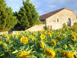Gîte Grange, Villen  Touffailles - big - 39