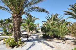 Medusa Beach Resort (4 of 53)