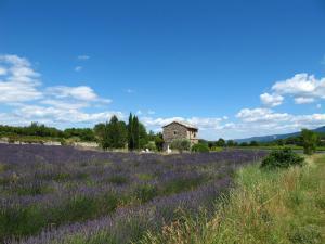 Villa Saignon, Vily  Saignon - big - 9