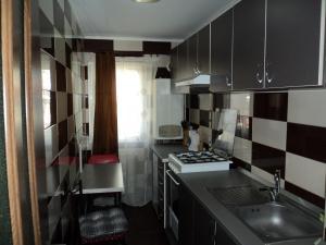 Apartament Elena, Appartamenti  Tîrgu Ocna - big - 5