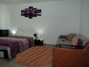 Apartament Elena, Appartamenti  Tîrgu Ocna - big - 2