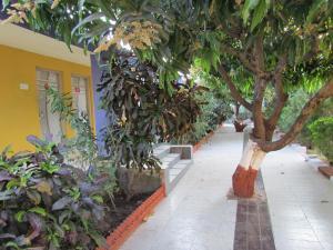 Jenish Farm, Resort  Sasan Gir - big - 17