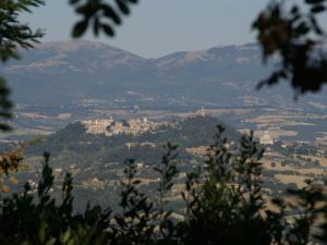 Villa La Selva, Vily  Quadro Vecchio - big - 13