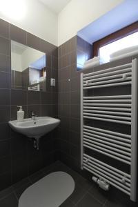 Villa Gap apartments, Apartments  Český Krumlov - big - 11