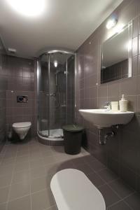 Villa Gap apartments, Apartments  Český Krumlov - big - 17
