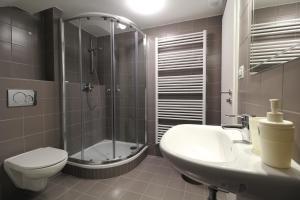 Villa Gap apartments, Apartments  Český Krumlov - big - 4