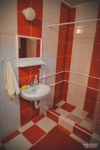 Guest House Vila Banjica, Pensionen  Pirot - big - 98