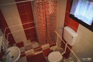 Guest House Vila Banjica, Pensionen  Pirot - big - 96