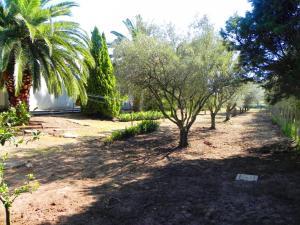 Villa Eleonora, Виллы  Тропеа - big - 87