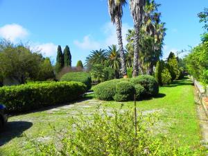 Villa Eleonora, Vily  Tropea - big - 56