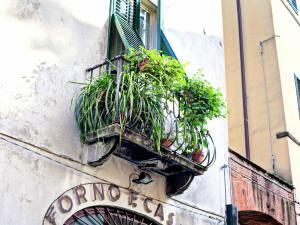 Il Pittore - Botticelli, Dovolenkové domy  Lucca - big - 32