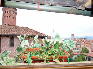 Il Pittore - Botticelli, Dovolenkové domy  Lucca - big - 26