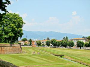 La Regina Di Lucca - Casa Artisti 1, Apartmanok  Lucca - big - 5