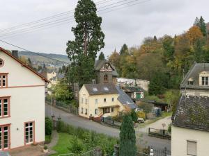 Moselweingut, Ferienwohnungen  Traben-Trarbach - big - 13
