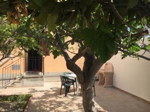 Casa Vacanze Bonhouse, Дома для отпуска  Ното - big - 1