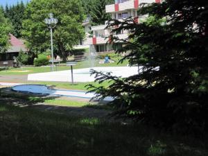 Appartements im Predigtstuhl Resort, Apartmanok  Sankt Englmar - big - 28