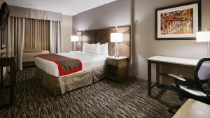 Queen Suite with one Queen Bed