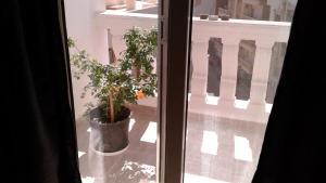 A&A Hurghada Ferienwohnung, Appartamenti  Hurghada - big - 8