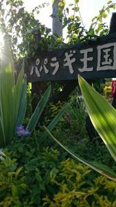 Paparagi Oukoku, Лоджи  Мотобу - big - 77