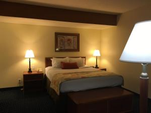 Queen Suite with Sofa-bed - Disability Access/Non-Smoking