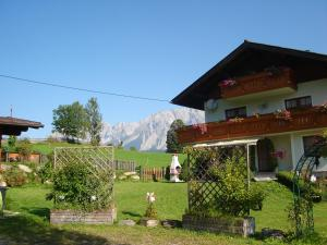 Alpenblick - Apartment - Schladming