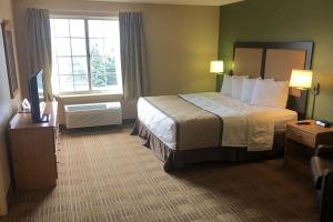 One Bedroom Sute