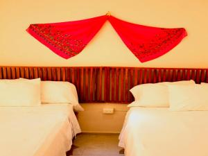 Hotel Zamna, Hotely  Mérida - big - 19