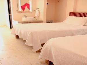 Hotel Zamna, Szállodák  Mérida - big - 20