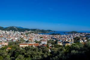 Blue Angels Villa, Vily  Skiathos Town - big - 19