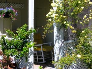 Cottage The Studio