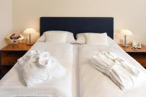 Hotel Arkadia, Residence  Friedrichsdorf - big - 2