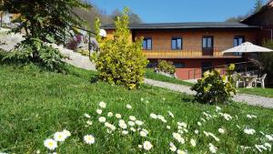 Gite du Walsbach, Дома для отпуска  Мюнстер - big - 1