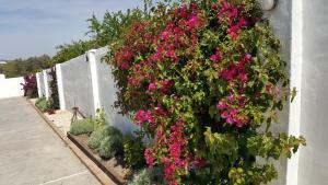 La Posada del Duende, Penziony  Arcos de la Frontera - big - 55
