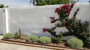 La Posada del Duende, Affittacamere  Arcos de la Frontera - big - 52