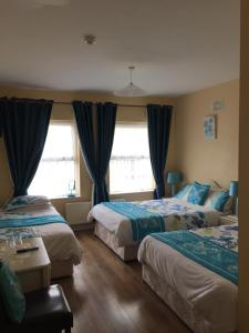 Bolands B&B, Bed and Breakfasts  Dingle - big - 31