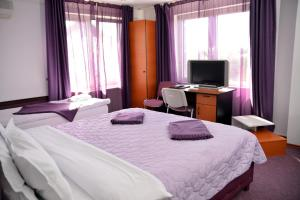 Amethyst House, Pensionen  Otopeni - big - 19