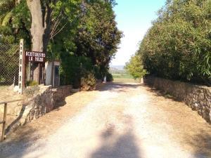 La Palma, Bauernhöfe  Magliano in Toscana - big - 38