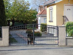 Kata vendégház, Penziony  Bük (Bükfürdö) - big - 85