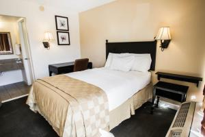 Standard-værelse med 2 dobbeltsenge