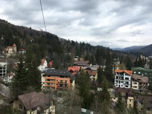 Sinaia view, Apartments  Sinaia - big - 14
