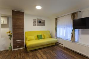 Vila Aleksandra, Apartments  Zlatibor - big - 32