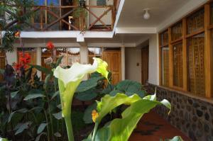 Hostel Andenes, Hostelek  Ollantaytambo - big - 42