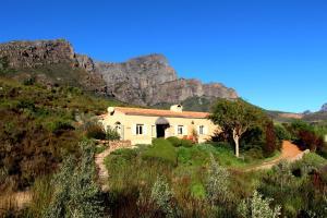 The Cottage @ Montpellier, Виллы  Франсхук - big - 12