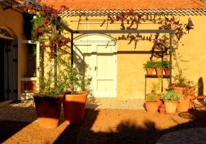The Cottage @ Montpellier, Виллы  Франсхук - big - 16