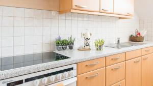 Gästehaus Lipnik, Appartamenti  Sankt Kanzian - big - 11