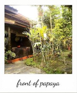 Baankiri, Affittacamere  Chiang Mai - big - 39