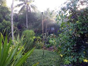 Mi Casa Ijen Guest House, Guest houses  Licin - big - 16