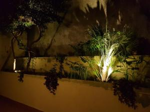 B&B Verga, Bed & Breakfasts  Catania - big - 33