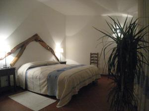 Il Vecchio Ginepro, Bed and breakfasts  Arzachena - big - 33