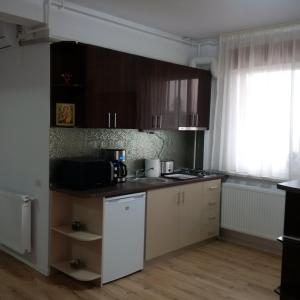 Alexia Apartments, Appartamenti  Mamaia Nord – Năvodari - big - 47